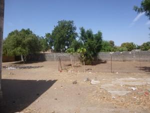 Jardin de l'école de Ndianda